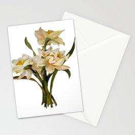 Double Narcissi Spring Flower Bouquet Stationery Cards