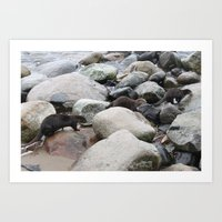 otters Art Prints featuring Wild otters by Joni
