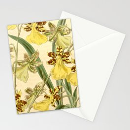 Oncidium graminifolium (as Oncidium wrayae) Curtis' 67 (N.S. 14) pl. 3854 (1841) Stationery Cards