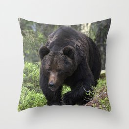 King of forest, male brown bear approaching Throw Pillow