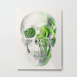 ANTHROPOLOGY Metal Print