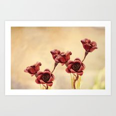 Ruby Red Art Print