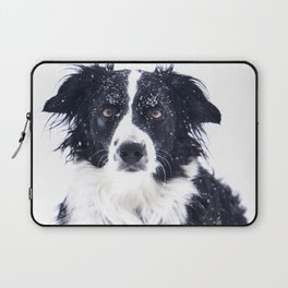 border collie in winter Laptop Sleeve