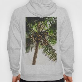 Coconut Bounty Hoody
