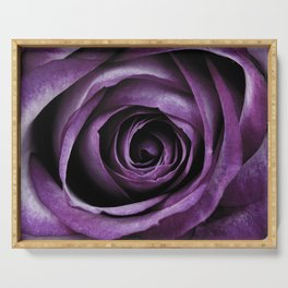 Purple Rose Decorative Flower Serving Tray