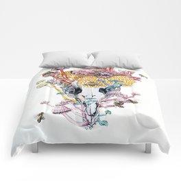 Petrogale Xanthopus Xanthopus + the Visitors Comforters