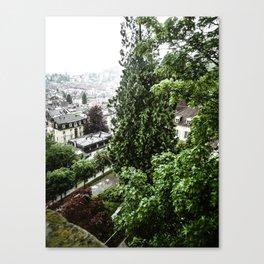 European View Canvas Print