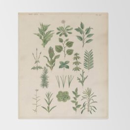 Botany Chart Throw Blanket