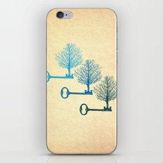 Tree Keys iPhone & iPod Skin