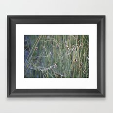 Gossamer Framed Art Print