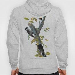 Three-toed Woodpecker - John James Audubon Hoody