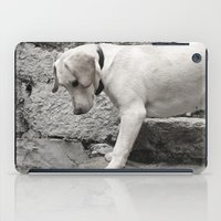 lab iPad Cases featuring Croatian Lab by Upperleft Studios