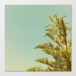 Sky tree Canvas Print