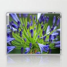 Got the blues? Laptop & iPad Skin