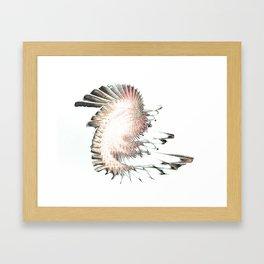 See Bird Framed Art Print