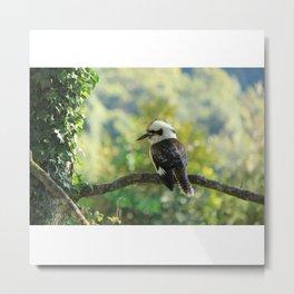 Kookaburra Watch Metal Print