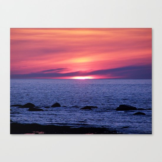 Painted By Nature Canvas Print