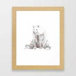 Brody the Bear Framed Art Print