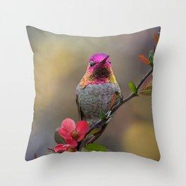 Anna's Hummingbird Springtime blooms Throw Pillow