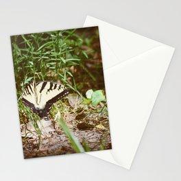 Fly Butterfly Stationery Cards