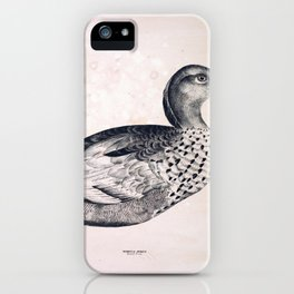 075 Maned Goose bernicla jubata iPhone Case