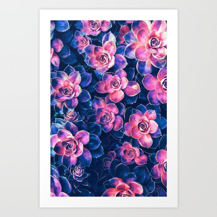 Colorful Succulent Plants Kunstdrucke