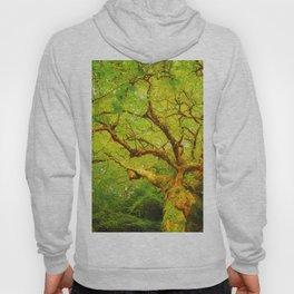 Golgotha Tree Hoody