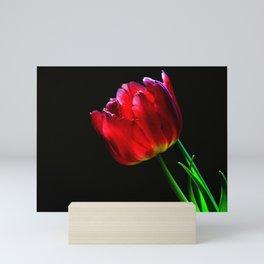I want to talk about it. Mini Art Print