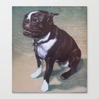 boston terrier Canvas Prints featuring Boston Terrier by RSassi