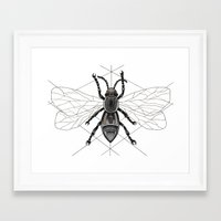 insect Framed Art Prints featuring insect by silb_ck