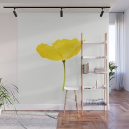 Yellow Poppy White Background #decor #society6 #buyart Wall Mural
