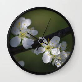 Cherry tree flowers 1 Wall Clock