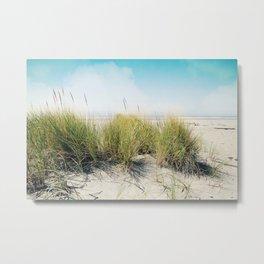 dune grass Metal Print