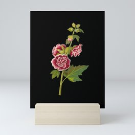 Alcea Rosea Mary Delany Delicate Paper Flower Collage Black Background Floral Botanical Mini Art Print