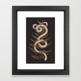 The Snake and Fern Framed Art Print