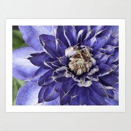 Spikey Blue Art Print