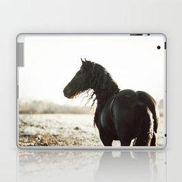 Klaas Laptop & iPad Skin