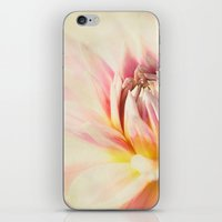 dahlia iPhone & iPod Skins featuring dahlia by lucyliu