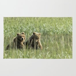 Brown Bear Cubs - Before Play Rug
