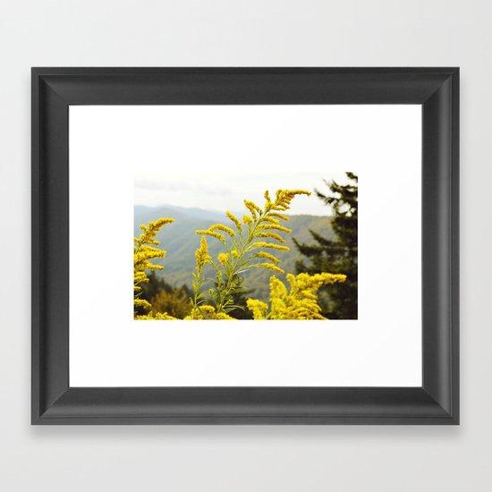 Mountain Gold Framed Art Print