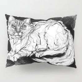 Dio the Maine Coon Pillow Sham