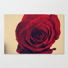 Head-on Rose Canvas Print