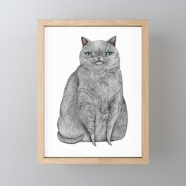 Grey Cat Framed Mini Art Print