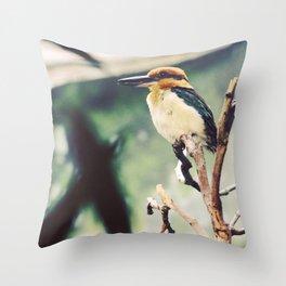 Guam Micronesian King Fisher Throw Pillow