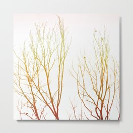 Branches#retro#film#effect Metal Print