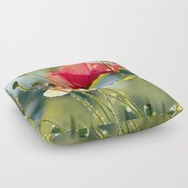 Backlit poppies Floor Pillow