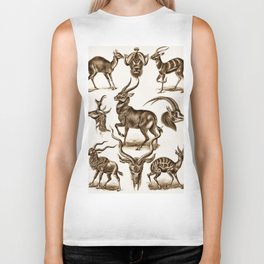 Ernst Haeckel Antilopina Antelope Biker Tank