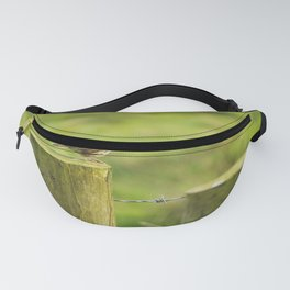 Meadow Pipit Donegal Ireland Fanny Pack