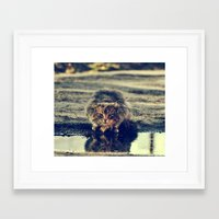 oasis Framed Art Prints featuring oasis by LindaMarieAnson