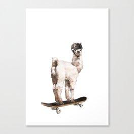 Skate Llama Canvas Print